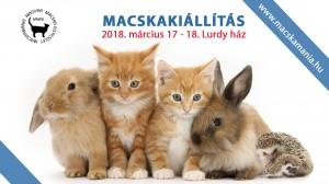 macskamania201803